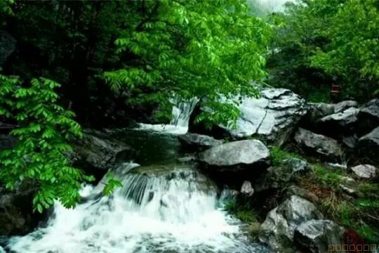 诗景龙潭峡,杜鹃花成海一日游