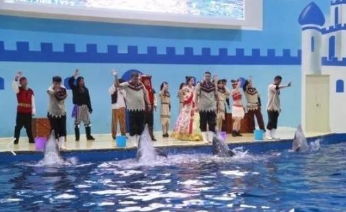 中赫海豚湾海洋公园+宝丰科技馆+倒盏民俗文化村一日